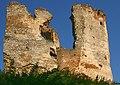 Cicava ruiny mur 18.08.08 p.jpg