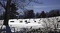 Cimetiere de Bury - panoramio.jpg