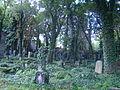 Cmentarz żydowski w Katowicach 01.JPG