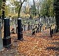 Cmentarz żydowski w Legnicy(8).jpg