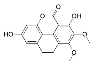 Coeloginin - Chemical structure of coeloginin