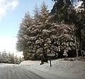 Col de la Croix des Fourches sous la neige.jpg
