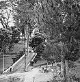 Collectie NMvWereldculturen, TM-20001015, Negatief- 'Straatgezicht in een park', fotograaf Boy Lawson, 1971.jpg