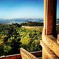 Colli bolognesi da San Luca.jpg