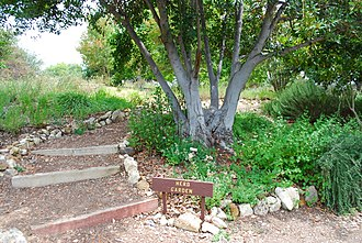 Conejo Valley Botanic Garden - Herb Garden.