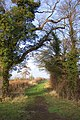 Cotswold footpath - geograph.org.uk - 296586.jpg