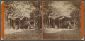 Cottage, Hamilton, from Robert N. Dennis collection of stereoscopic views.png