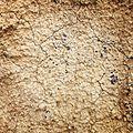 Cracked-earth(byKundanRamisetti).jpg