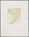 Crocodilus spec. - kaken - 1700-1880 - Print - Iconographia Zoologica - Special Collections University of Amsterdam - UBA01 IZ12200048.tif