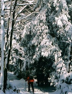 Kooser State Park - Cross-country skiing at Kooser State Park