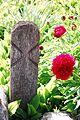 Cuciulata cimitir 1.jpg