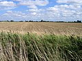 Cultivated stubble field, Moulton Fen, Lincs - geograph.org.uk - 1482082.jpg