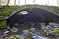 Culvert beneath site of Higher Lumb Mill, Colden Clough - geograph.org.uk - 437893.jpg