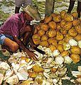 Cutting coconuts Seychelles.jpg