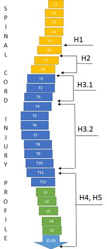 F4 (classification) - Wikipedia