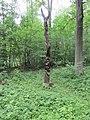 Dūkštų sen., Lithuania - panoramio (47).jpg