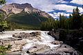 D6A 9575 - Athabasca Falls (9792405554).jpg