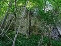 DE-BW-RT ND Schwanenbergfels (Schafwäschefels) DSC01177.jpg