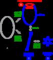DNAsupercoils3.png