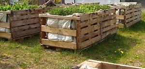 Community gardening - Mobility Community gardening