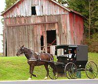 Повозка амишей