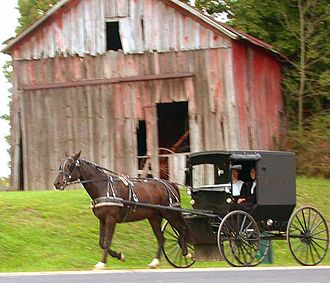Amish - Amish couple in horse-driven buggy in rural Holmes County, Ohio, September 2004