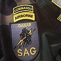 Danab Brigade Armpatch Somali Army.jpg
