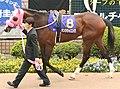 Dantsu Winning 20080420P1.jpg