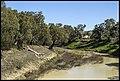 Darling River at Wilcannia-1 (21366424095).jpg