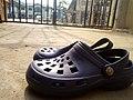 Dawgs footwear 05.jpg