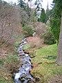 Dawyck Botanic Gardens, Scrape Burn.JPG