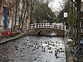 Delft nov2010 161 (8326270994).jpg