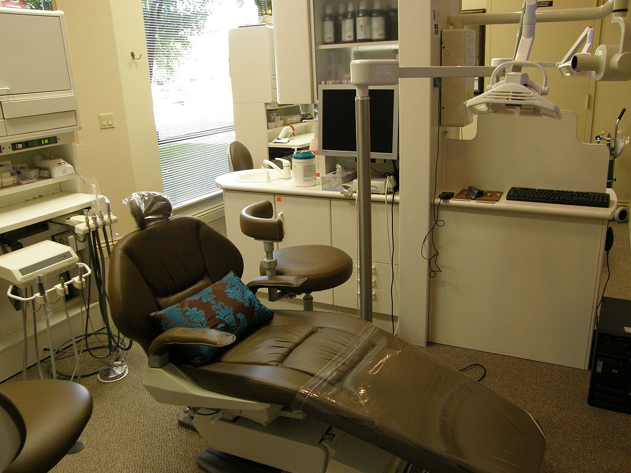 Anesthesia Free Teeth Cleaning For Dogs Sacramento