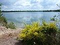 Der Offlumer See bei Neuenkirchen - geo.hlipp.de - 10709.jpg