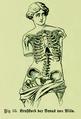 Die Frau als Hausärztin (1911) 055 Brustkorb der Venus von Milo.png