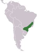 Southern Brazil no farther south than the southern tip of Paraguay