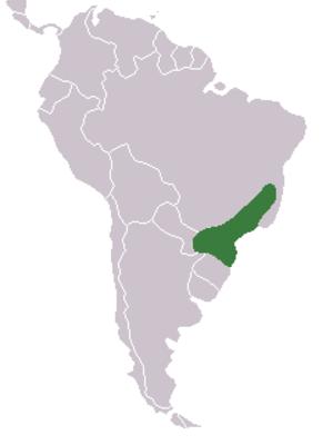 Vinaceous-breasted amazon - Image: Distribuicao geografica amazona vinacea