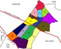 Distrito de Fernando de la Mora.png