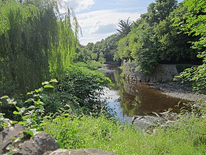 River Dodder - Dodder at Milltown
