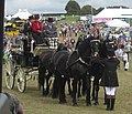 Dorchester County Show - geograph.org.uk - 1553738.jpg