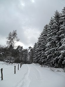 Winter Landscape, Germany