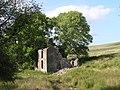 Dorwen Farm - geograph.org.uk - 1353049.jpg