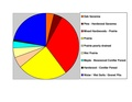 Douglas Co Pie Chart No Text Version.pdf