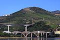 Douro3.jpg