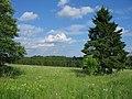 Draudavkalns - panoramio - aldonis.jpg