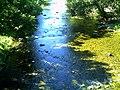 Dreisam Creek - September 2013 - panoramio (1).jpg