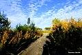 Droga z miejscowości Mała Kempa w kierunku Fordońskiego mostu - panoramio (7).jpg