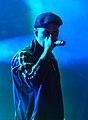 Dropkick Murphys – Reload Festival 2015 05.jpg