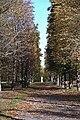 Drottningholm - KMB - 16000300032562.jpg