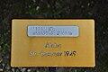 Duftrosengarten Rapperswil - Aloha Str. Boerner 1949 2010-10-02 16-30-42.JPG
